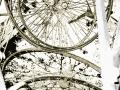 Cyclique